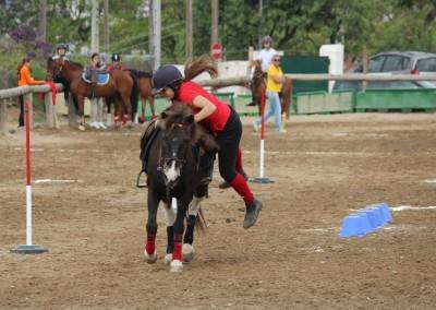 hipica-can-caldes-sant-cugat-barcelona-caballo (12)
