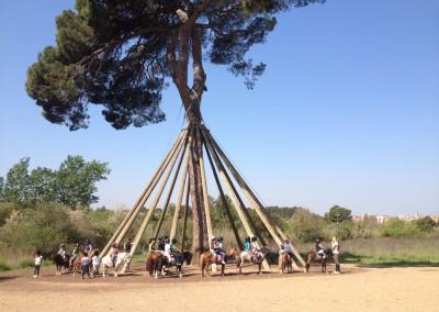 hipica-can-caldes-sant-cugat-barcelona-caballo (4)