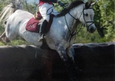 hipica-can-caldes-sant-cugat-barcelona-caballo (5)