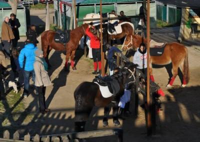 Can Caldes Sant Antoni 201516