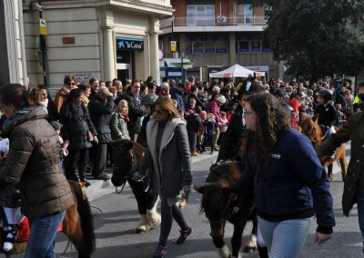 Can Caldes Sant Antoni 201536