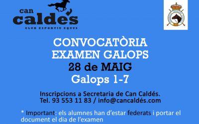 Horario Provisional  Galopes (28/05/17)